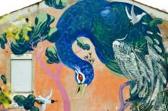 soggetto del murale un pavone e altri uccelli