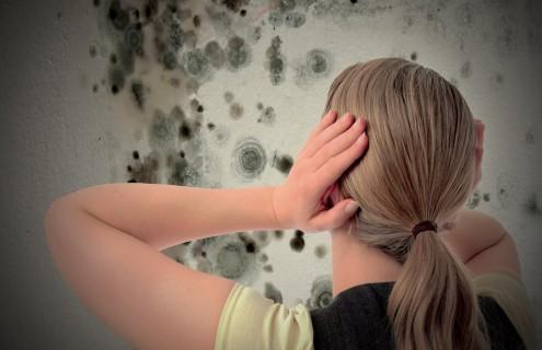 Come eliminare la muffa dalle pareti di casa casanoi blog - Eliminare condensa dalle finestre ...