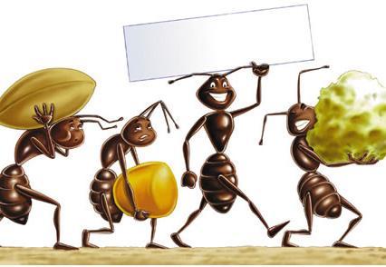 Casanoi blog tutto quello che devi sapere per vendere for Esche per formiche