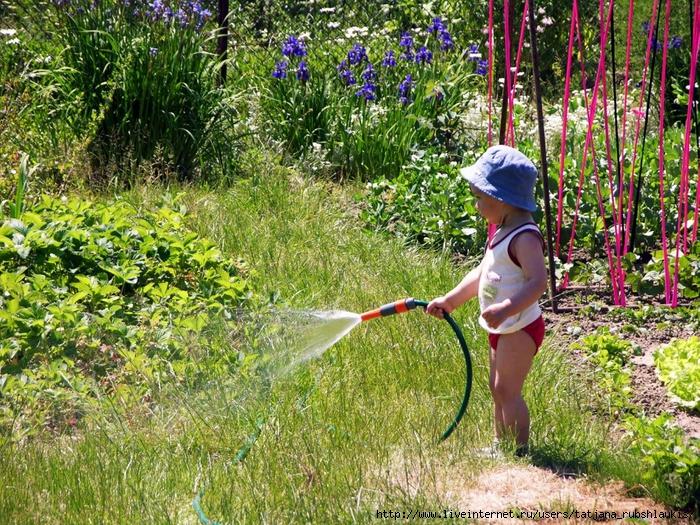 come innaffiare in estate con tubo e gocciolatoio