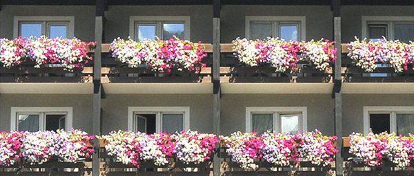 bonus verde agevolazioni fiscali per terrazzi balconi giardini tetti verdi condominiali e privati