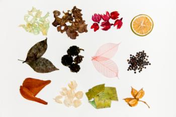 profumare la casa FOTO foglie di piante diverse per pot pourri