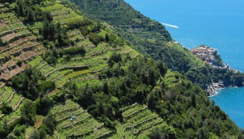 muretti a secco patrimonio Unesco in Liguria terrazzamenti